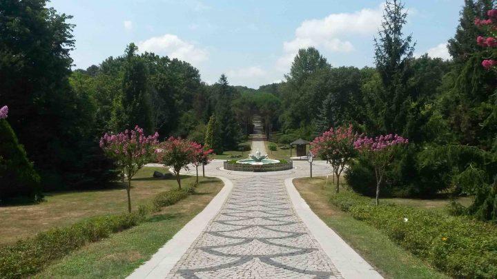 Arboretum02