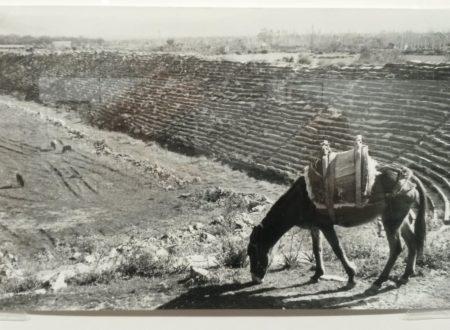 Le foto di Ara Güler ad Aphrodisias