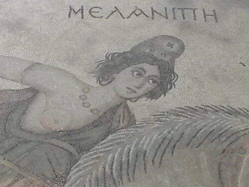 Amazzoni e centauri nei mosaici di Haleplibahçe (a Urfa)