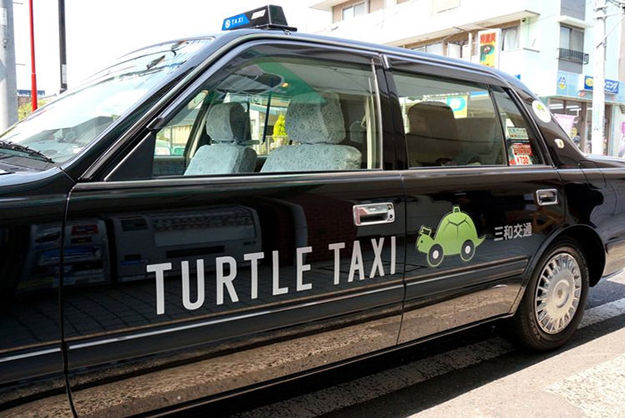 TURTLE TAXI