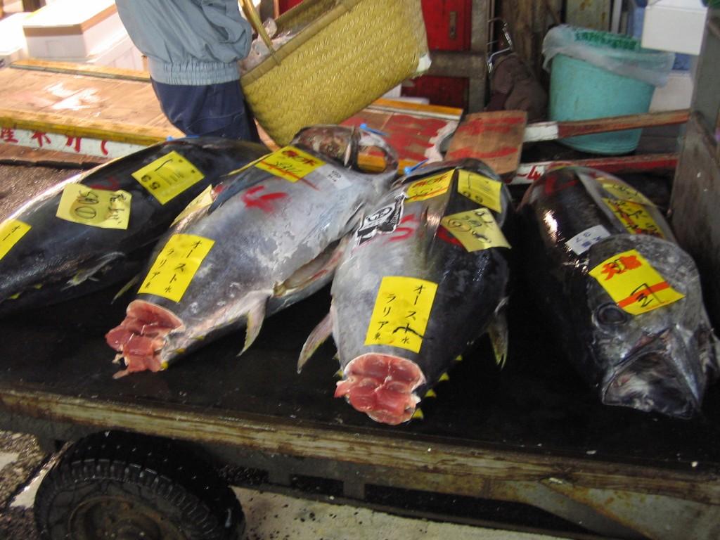 Tsukiji 1